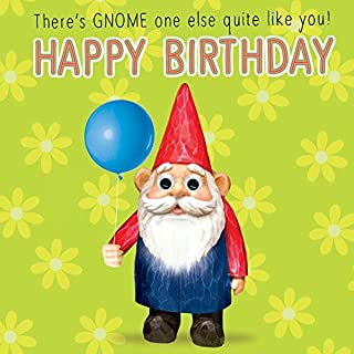 Gnome Greeting Cards - Funny Gnome Birthday Card Goggly