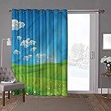 YUAZHOQI cortinas aisladas para puerta corredera, paisaje, dibujos animados Valley Scene, W52 x L96 pulgadas de largo cortinas de puerta de cristal para ventana (1 panel)