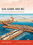 Salamis 480 BC: The naval campaign that saved Greece