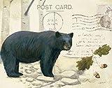 The Poster Corp James Wiens – Northern Wild IV Kunstdruck