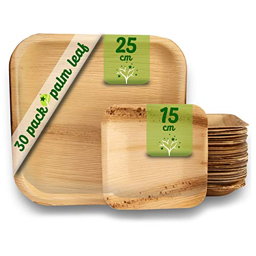 Platos desechables de hoja de palma 30 Piezas, 25 Platos cuadrados de 25 cm y 5 Platos de 15 cm. vajilla rustica de madera para barbacoas y fiesta de cumpleaños. Biodegradable libre de plástico.