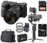 Sony Alpha a6600 Mirrorless Digital Camera with 18-135mm Lens Gimbal Bundle with DJI Ronin SC and Accessories