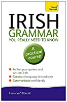Irish Grammar You Really Need to Know (Teach Yourself)