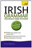 Irish Grammar You Really Need to Know (Teach Yourself)