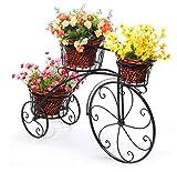 GQSHK Supporto per Fiori - Ornamenti per Biciclette in Ferro battuto con Piano portaoggetti in Vetro Verde (Colori: Nero)