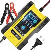 Batterie-Ladegerät (12V/24V) mit regenerier-Funktion (Blei, Lithium, LiFePo4)