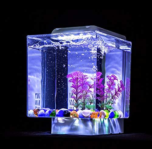 JIANGU Mini Desktop acryl kleines Aquarium, Hause Wohnzimmer Schreibtisch Dekoration einfach zu reinigen Aquarium