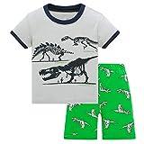 HIKIDS - Pijama Corto para niño - Pijamas de Manga Corta Verano para Niños - Pijama Dos Piezas Summer niño - Pijamas de Manga Corta para niños Dinosaurio - Gris - 8 Años