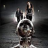 DFCYT 5D Diy pintura de diamantes redondos la película Terminator 5D bordado punto de cruz mosaico...