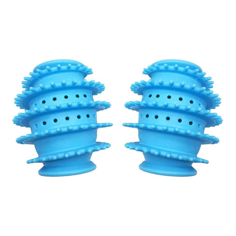 魚性別四2PCSマジックナチュラルランドリーボールボール洗濯機専用洗浄剤アンチ巻きドライボール (Color : Blue)