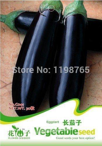 100pcs / pack.Free Livraison Violet Aubergine Seeds Graines de légumes 49% [Reliure inconnue]