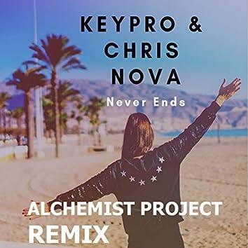 Never Ends (Alchemist Project Remix)
