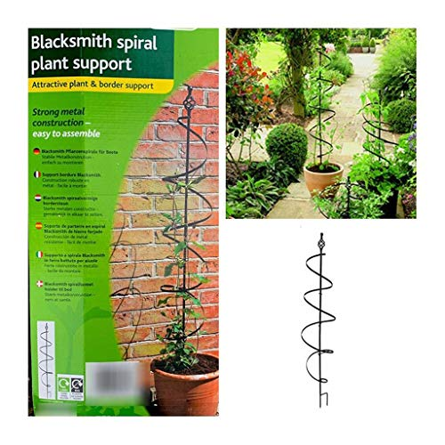 ZWW Handel Schmiedeeisen Spirale Pflanze Klettergerüst Clematis Windmill Jasmin Rahmen Pflanze Modellierung Bracket Pflanze Unterstützung Stakes