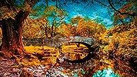 数字で描くキットDIY油絵キャンバスカラートーク大人のための家の壁の装飾初心者-川の秋の池草の木40×50cm(フレームレス)