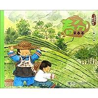 二十四节气旅行绘本(春):春分·采春茶