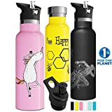 Best Eco Friendly Water Bottles - Double Walled Insulated Water Bottle with Straw Lid Review