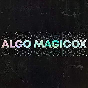 Algo Magicox
