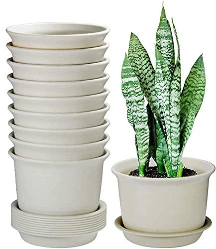 KAHEIGN 10 Pezzi Vasi Da Fiori In Plastica, 15CM Addensare Vasi Per Piante Contenitore Per Piante Vaso Da Giardinaggio Per Interni Con Pallet Di Drenaggio (Bianco)