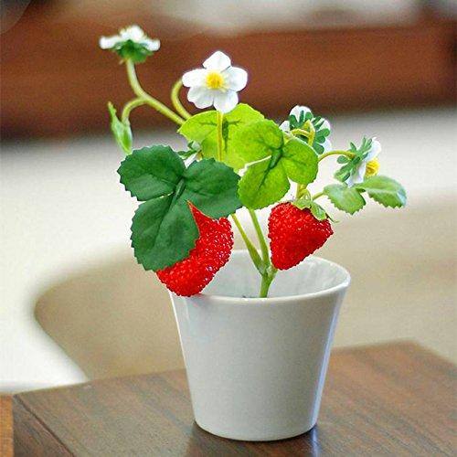 500 pcs/sac mini-graines de fraises en pot Rare petit enfant Fragaria ananassa graines de fruits pot de bonsaïs L. pour plantes de jardin à domicile