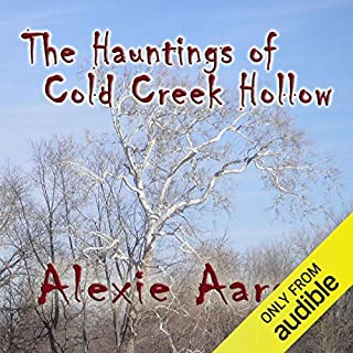 The Hauntings of Cold Creek Hollow audiobook cover art