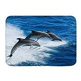kThrones Alfombra de baño Alfombra Bebé Mar Animal Delfín Saltar del océano,Alfombrillas de Felpa para decoración de baño con Respaldo Antideslizante(75x45cm)