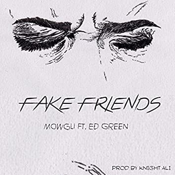 Fake Friends (feat. Ed Green)