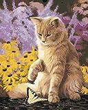 YEESAM ART Pintura por números para adultos principiantes, diseño de mariposas de gato, 40,6 x 50,8 cm, lienzo de lino – pintura digital DIY por números Kits en lienzo