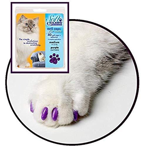 Soft Claws Für Katzen, Größe L, Violett