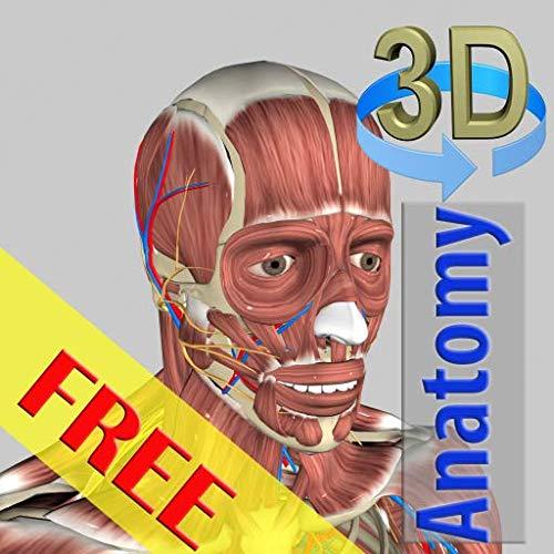 3D Anatomy Free