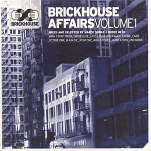 Brickhouse Affairs Vol 1 product image