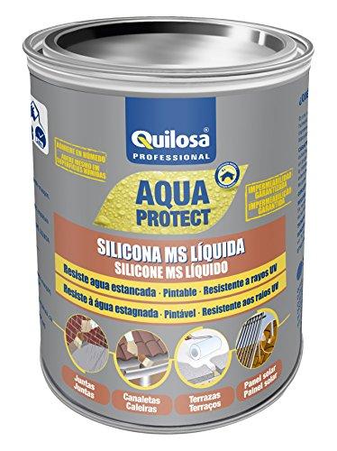 Quilosa T049262 Silicona Ms Liquida, Blanco, 1 kg