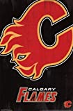 The Poster Corp Calgary Flames - Logo 2013 Laminiertes