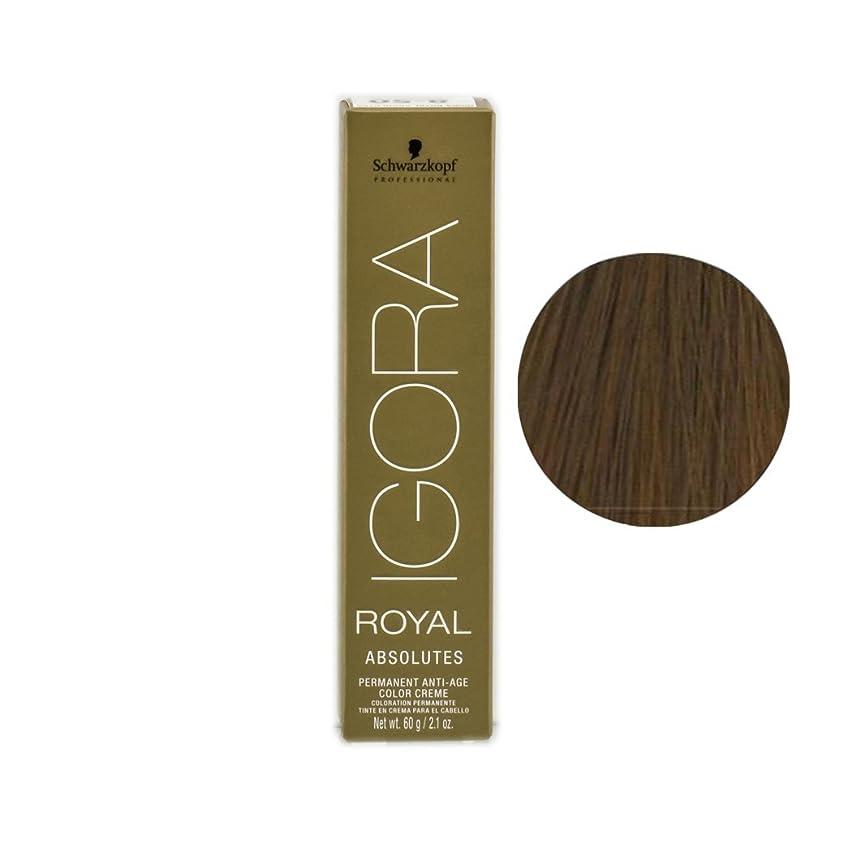 動詞講堂がんばり続けるSchwarzkopf プロフェッショナルIGORAロイヤルアブソリュート髪の色、 9-56、エクストラライトブロンドゴールドチョコレート