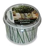 OREGANO - Vaso para hierbas aromáticas