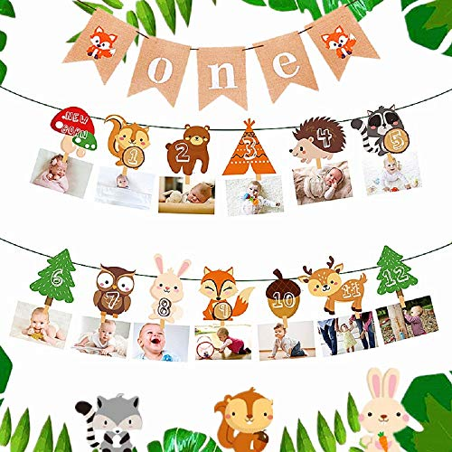 JeVenis Set of 2 Woodland First Year Photo Banner Wild One First Birthday Party Decoration Forest Animal 12 Month Banner Woodland Animal Party Woodland 1st Birthday Banner