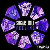Sugar Hill - Feeling ( Radio Edit ) (Original Mix)