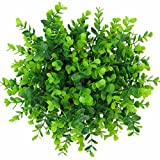XONOR (Pack of 6) Artificial Green Plant Eucalyptus Plastic Large Money Leaves Grass