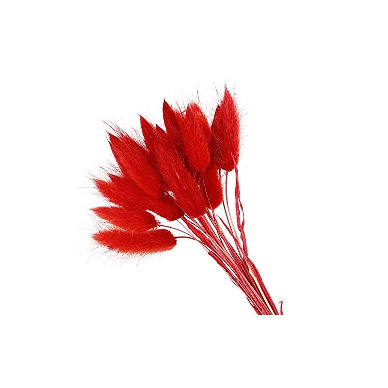 silk flower arrangements aisj 20pcs artificial flowers natural dried flowers lagurus colorful fake rabbit tail grass ovatus foxtail bouquet long bunches (color : f)