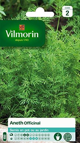 Vilmorin 5871046 Pack de Graines Aneth Officinal