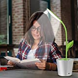 iEGrow Flexible USB Touch LED Desk Lamp with 3-Level Dimmer and Plant Pencil Holder(Green)