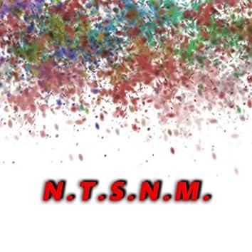 N.T.S.N.M.