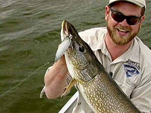 Clip: Sight-fishing Trophies at the 60th Parallel
