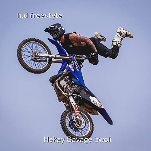 Hld Freestyle [Explicit]