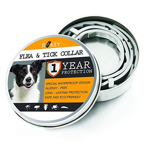 ROKEY Collare antipulci e zecche per Cani, 12 Mesi, per Controllo delle zecche e delle pulci per...