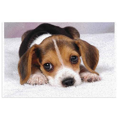 Beagle - Felpudo de entrada para cachorros y perros, de PVC, antideslizante, impermeable, para interiores y exteriores, alfombra de entrada, decoración de porche, 39,7 x 59,9 cm