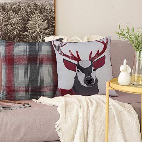 Always4u Design – Juego de 2 fundas de cojín bordadas para sofá, cama, casa, salón, funda de almohada supersuave, 45 x 45 cm