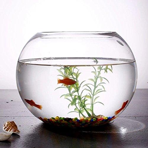 JIANGU, tanque de peces, vidrio creativo redondo tanque de peces, sala de estar pequeño cuenco de peces, oficina de escritorio Mini tanque de peces - 25cm