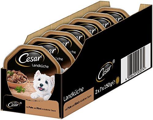 Cesar Comida para Perros