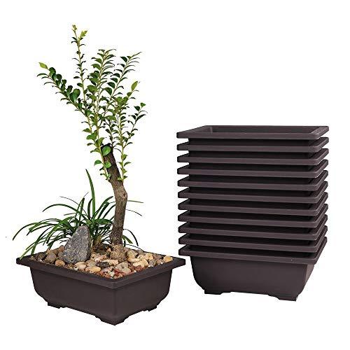 MUZHI 12PACK RetroStyle Plastic Bonsai Training Pots Balcony Indoor Rectangle Square Flower Pots 6'