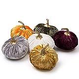 Best Pumpkin Navigations - Ogrmar Set of 6 Pack Handmade Velvet Pumpkins Review